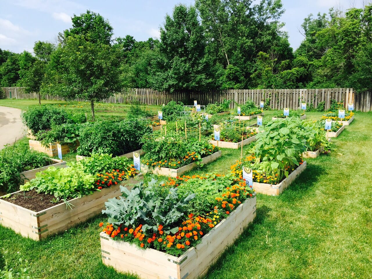 Design A House Online For Free Community Garden City Of Powell Powell Ohio