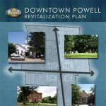 revitalization plan minipic